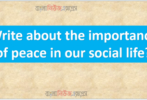 Write about the importance of peace in our social life?