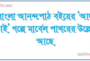 বাংলা আনন্দপাঠ বইয়ের 'আদু ভাই' গল্পে মার্বেল পাথরের উল্লেখ আছে