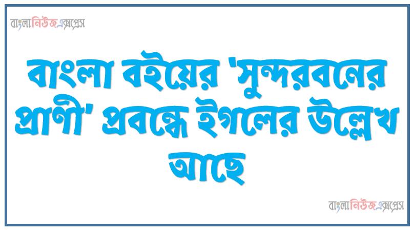 বাংলা বইয়ের 'সুন্দরবনের প্রাণী' প্রবন্ধে ইগলের উল্লেখ আছে